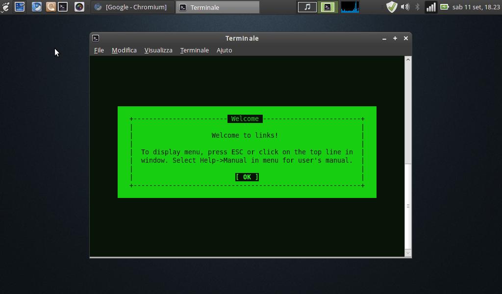 Links il browser testuale figo il nido del picchio for Il nido del picchio